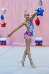 Соревнования по художественной гимнастике 31 марта-1 апреля 2016 года, Фото: 51