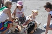 Фестиваль помощи животным в Центральном парке, Фото: 3