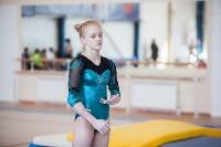 Первенство ЦФО по спортивной гимнастике среди юниорок, Фото: 42