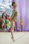 Соревнования «Первые шаги в художественной гимнастике», Фото: 49