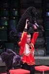 Цирк «Вива, Зорро!» в Туле , Фото: 3