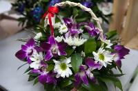 Ассортимент тульских цветочных магазинов. 28.02.2015, Фото: 13