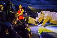 Туляков приглашают на новогоднее представление «Ёлка в цирке», Фото: 67
