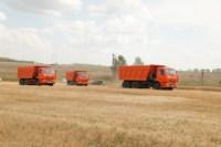 Уборка урожая в Веневском районе. 04.08.2014, Фото: 3