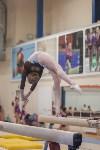 Первенство ЦФО по спортивной гимнастике, Фото: 150