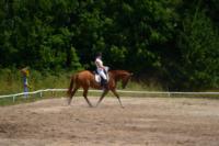 В Ясной поляне стартовал турнир по конному спорту, Фото: 127
