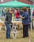 Международная выставка собак, Барсучок. 5.09.2015, Фото: 17