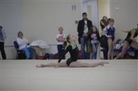 Открытый турнир по спортивной гимнастике. 23-30 ноября 2013, Фото: 7