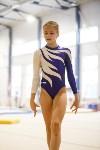 Спортивная гимнастика в Туле 3.12, Фото: 177