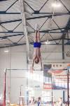 Мужская спортивная гимнастика в Туле, Фото: 3