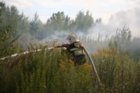 Пожар в гаражном кооперативе №17, Фото: 23