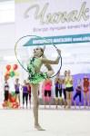 Художественная гимнастика. «Осенний вальс-2015»., Фото: 118