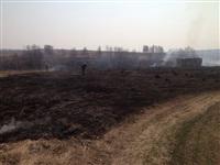 В Ленинском районе из-за горящей травы сгорела дача, Фото: 10