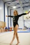 Спортивная гимнастика в Туле 3.12, Фото: 89