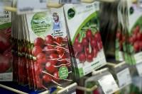 Леруа Мерлен: Какие выбрать семена и правильно ухаживать за рассадой?, Фото: 21