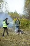 В Веневском районе высажено 24 тысячи сосен, Фото: 2