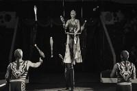 «Шоу Слонов» в Тульском цирке, Фото: 31