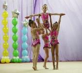 Соревнования «Первые шаги в художественной гимнастике», Фото: 73