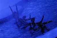 В Тульском цирке прошла премьера аква-шоу, Фото: 49