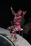 В Тульском цирке прошла премьера аква-шоу, Фото: 74