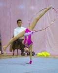 Соревнования по художественной гимнастике 31 марта-1 апреля 2016 года, Фото: 14