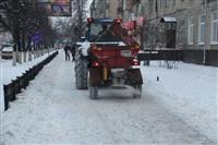 В Туле применяют новый реагент для обработки тротуаров, Фото: 3