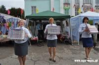 День Тульской области, Фото: 5