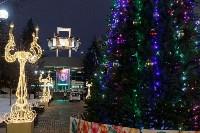 Дюмин осмотрел новогоднюю Тулу, Фото: 14