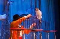 Театр кошек в ГКЗ, Фото: 37