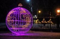 Тульские парки украсили к Новому году, Фото: 10