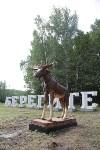 """Арт-объект """"Берегите лес"""" на въезде в Тулу, Фото: 4"""