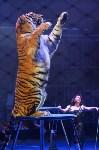 Цирковое шоу, Фото: 113