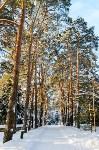 Снежное Поленово, Фото: 13