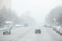 Мартовский снег в Туле, Фото: 39