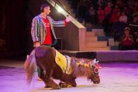 """""""Тайна пирата"""" в Тульском цирке, Фото: 41"""