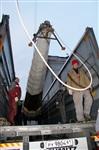 Утром 15 ноября в Тулу привезли шпиль для колокольни Успенского собора, Фото: 12