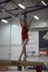 Соревнования по спортивной гимнастике на призы Заслуженных мастеров спорта , Фото: 79