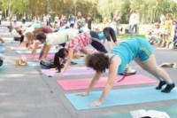 Фестиваль йоги в Центральном парке, Фото: 119