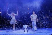 В Тульском цирке прошла премьера аква-шоу, Фото: 52