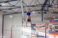 Мужская спортивная гимнастика в Туле, Фото: 9