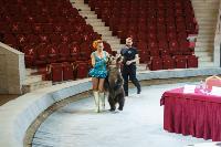 Пресс-конференция в Тульском цирке, Фото: 11