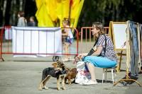 В Центральном парке Тулы проходит фестиваль помощи животным, Фото: 5