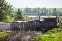 Коровы, свиньи и горы навоза в деревне Кукуй: Роспотреб требует запрета деятельности токсичной фермы, Фото: 2
