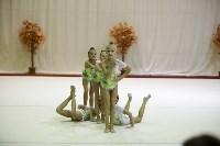 """Соревнования по художественной гимнастике """"Осенний вальс"""", Фото: 103"""