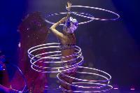Шоу фонтанов «13 месяцев» в Тульском цирке – подарите себе и близким путевку в сказку!, Фото: 50