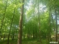 Три места для яркого загородного отдыха в Тульской области, Фото: 59