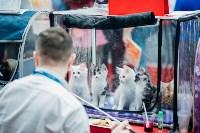 """Выставка """"Пряничные кошки"""" в ТРЦ """"Макси"""", Фото: 6"""