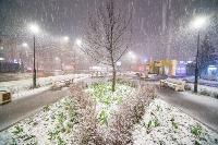 Апрельский снегопад - 2021, Фото: 95