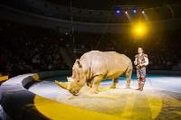 Туляков приглашают на новогоднее представление «Ёлка в цирке», Фото: 66