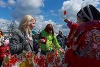 """Фестиваль """"Сад-Палисад""""-2016, Фото: 17"""